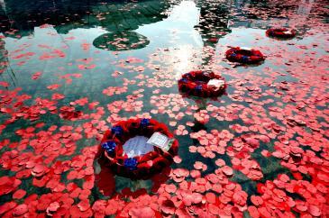Floating poppy wreaths